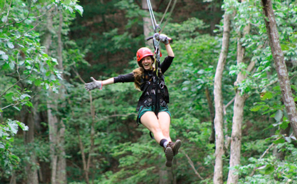 Tour de Canopy